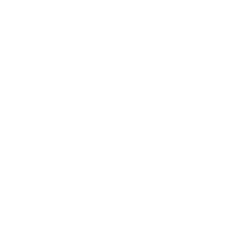 Salitre 100